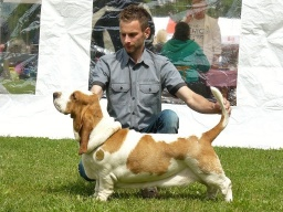 Perla Lady Barnett´s - Winner class - excellent 1, CAC